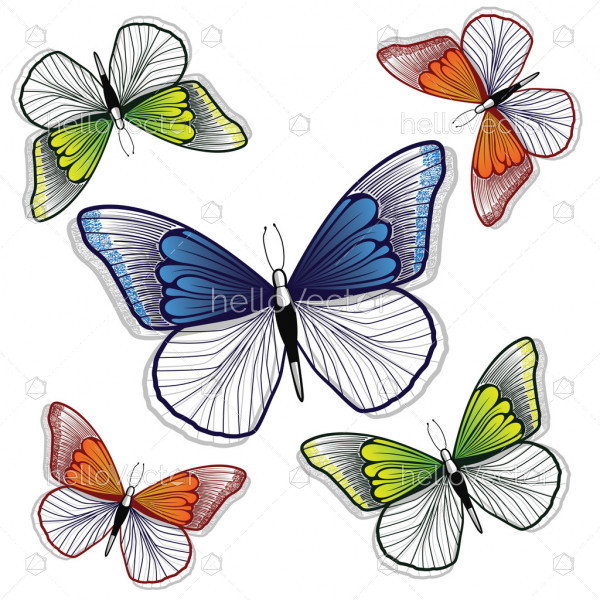 Butterfly background design for decoration