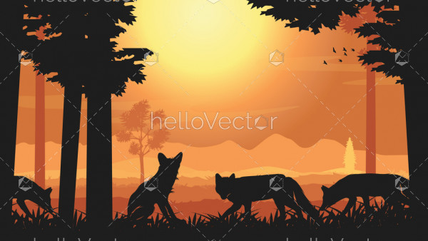 Group of red fox at sunset - silhouette background