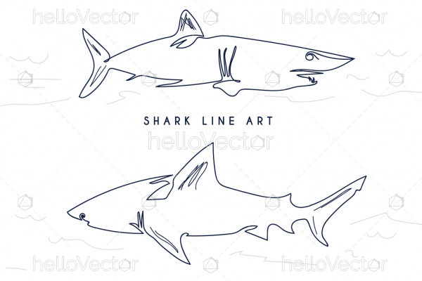 Shark fish in line art drawing style - Vector