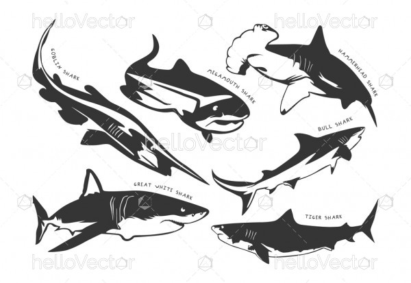 Set of different shark silhouette with names