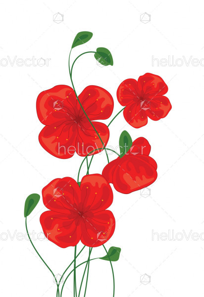 Red Poppy Flowers - Vector Illustration