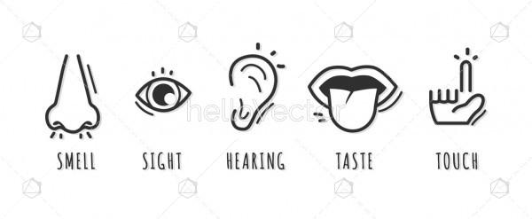Five senses icon design with name