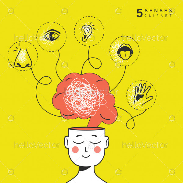 Five senses graphic illustration